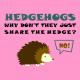 Hedgehogs light pink