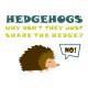 Hedgehogs white
