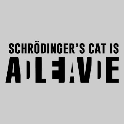 schrodingers cat grey