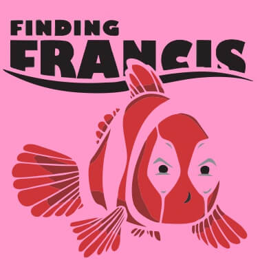 Finding Francis pink