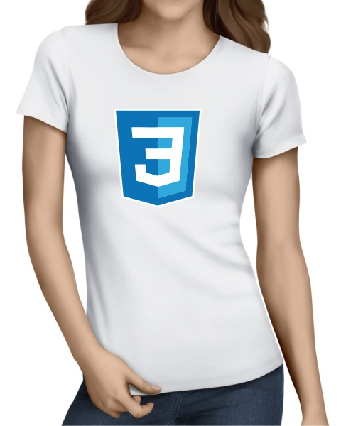 Silicon Valley CSS3 ladies tshirt