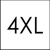 4xl icon
