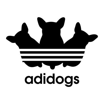 adidogs-white