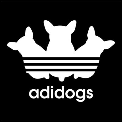 adidogs-black