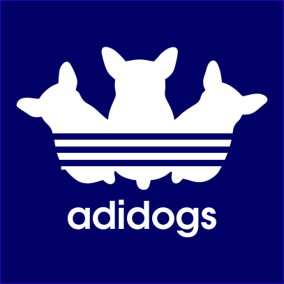 adidogs-navy