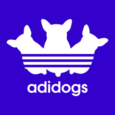 adidogs-royal-blue
