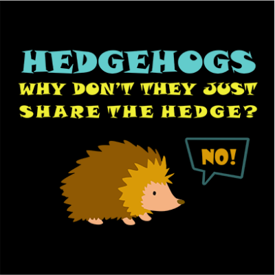 hedgehogs black square
