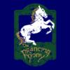 lotr-the-prancing-pony-navy
