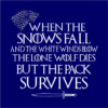 pack survives navy square
