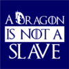 dragon is not a slave navy square