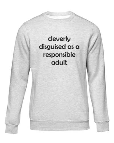 cleverly disguised grey sweater