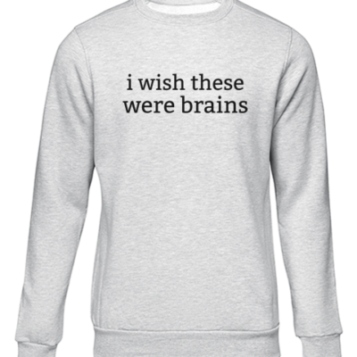 i wish these were brains grey sweater