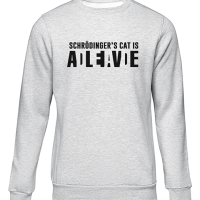 schrodingers cat grey sweater