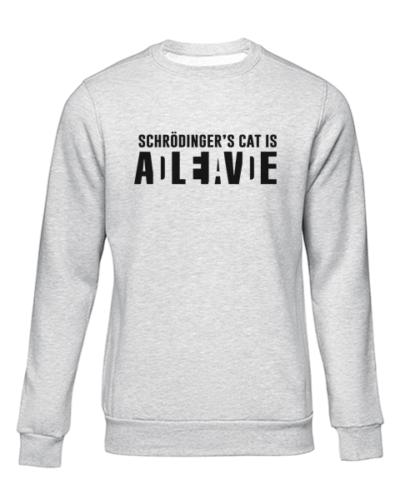 schrodingers cat grey sweater