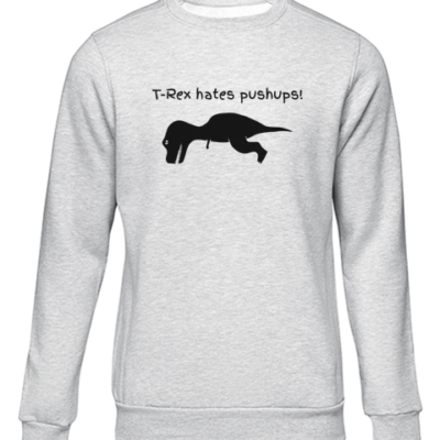 t rex hates push ups grey sweater