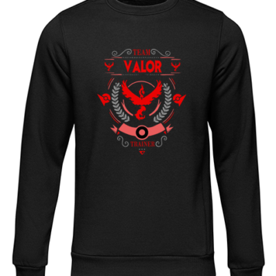 team valor black sweater