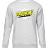 bazinga grey sweater