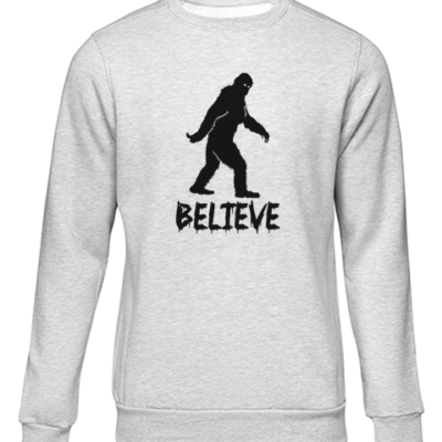 believe grey sweater