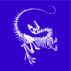 Dinosaur Skeleton blue square