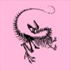 Dinosaur Skeleton pink square