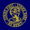 strike first cobra navy square